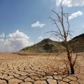 Desertificacion-Dia-Mundial-medio-ambiente
