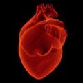 corazon-antidepresivo
