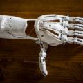 biotrasplantes-futuro-trasplantes-organos