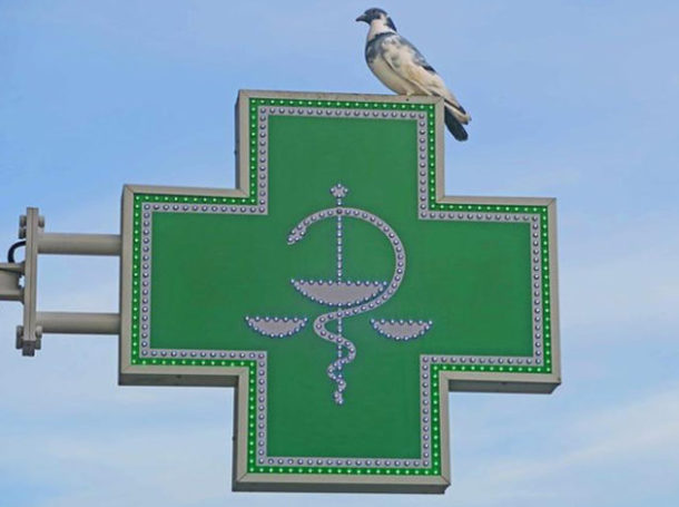 profesionales-farmacia-protección-covid-19