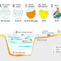 sedimentos-golfo-bizkaia