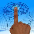 cerebro-covid-pandemia-avalancha