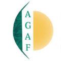 agaf-glaucoma