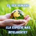 Humano-Animal-Inteligente